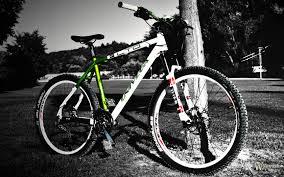 Орест Патер листал объявления и наткнулся на продажу собственного велосипеда